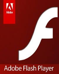 Adobe Flash Player 6.0 with Serial Number